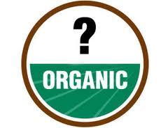 Organic Massage 2